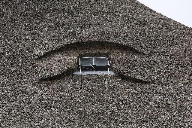 opstalverzekering rieten dak