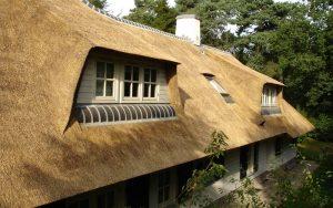rieten dak verzekeren