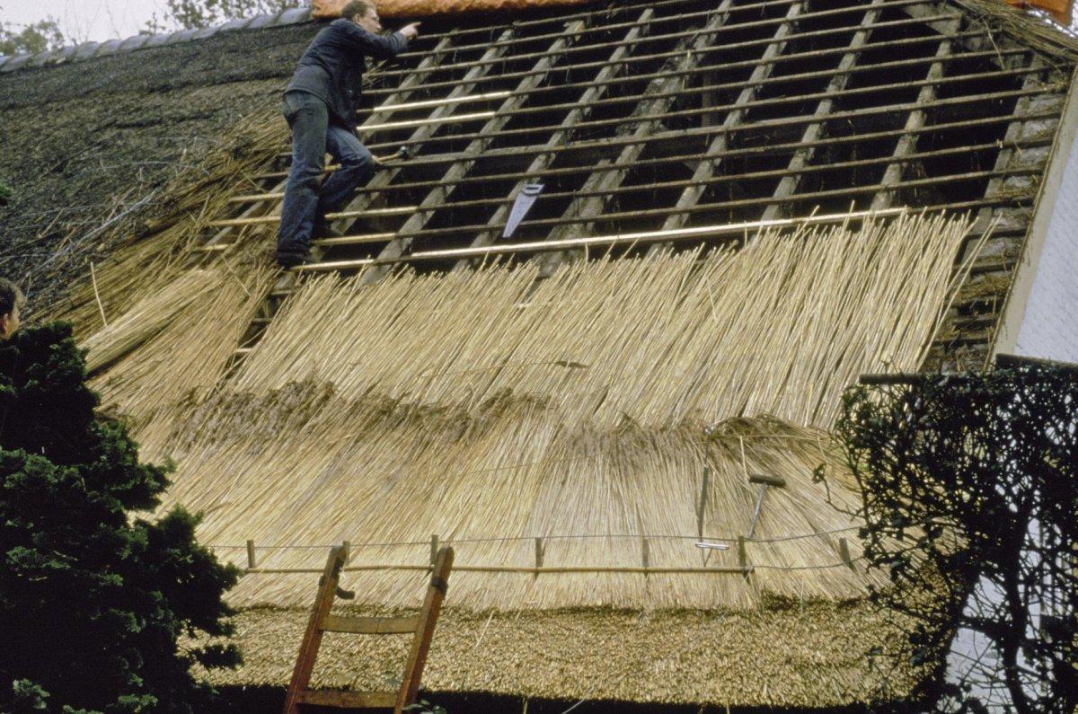 Uw rieten dak renoveren riet verzekering