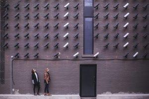 Digitale beveiliging rietverzekering