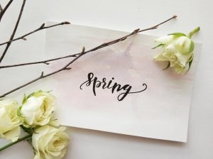 Voorjaarsschoonmaak rieten kap